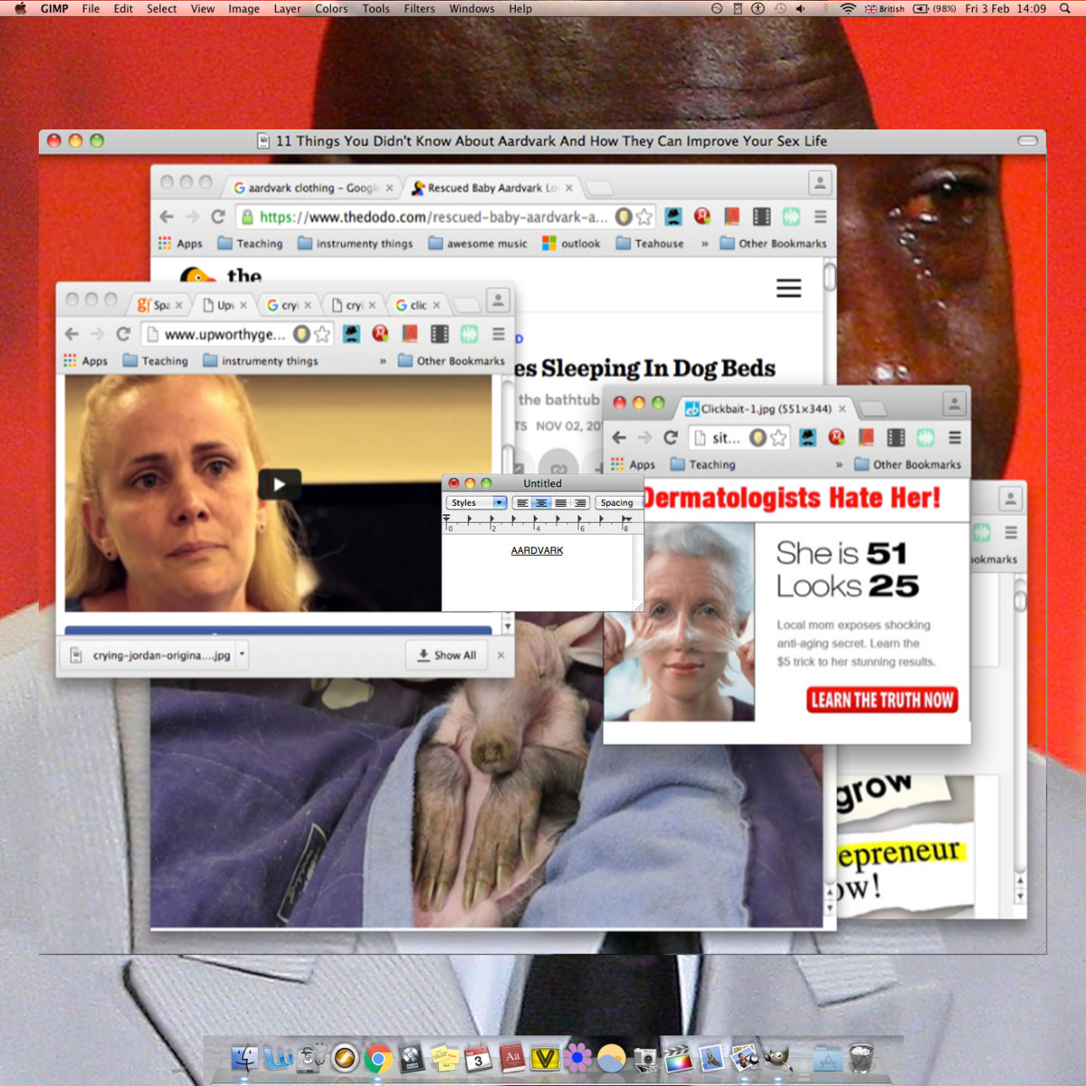 Aardvark_SEXSEXSEX